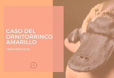 Caso Del Ornitorrinco Amarillo