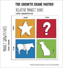 BCG Matrix y la cadena de valor de porter